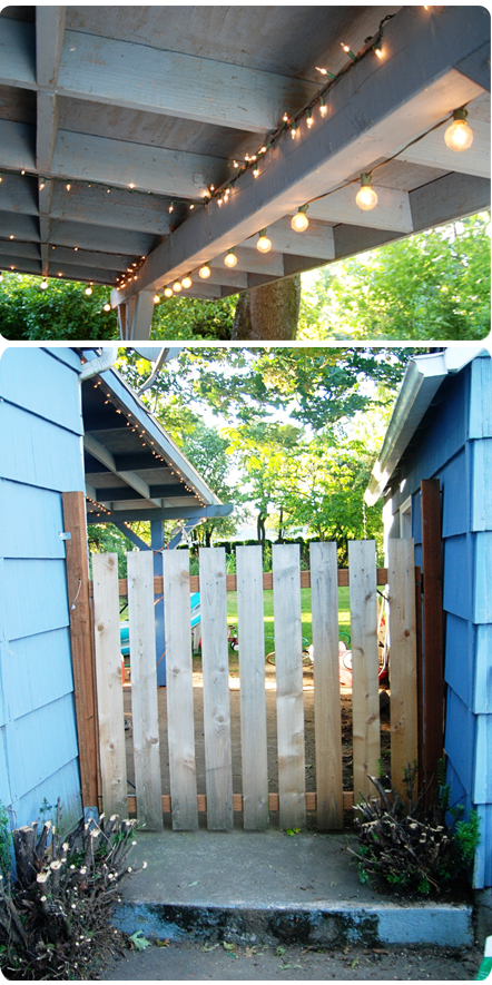 Backyard_04