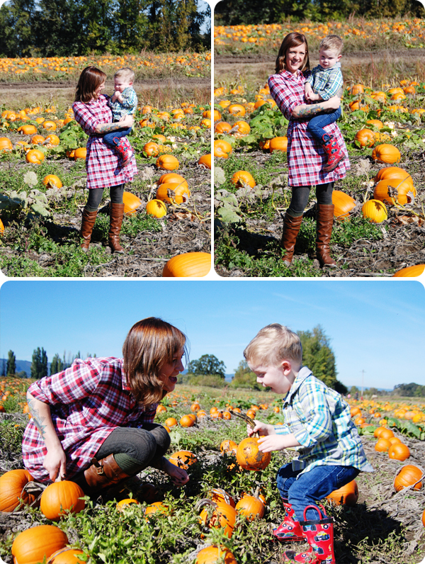 PumpkinPatch_03