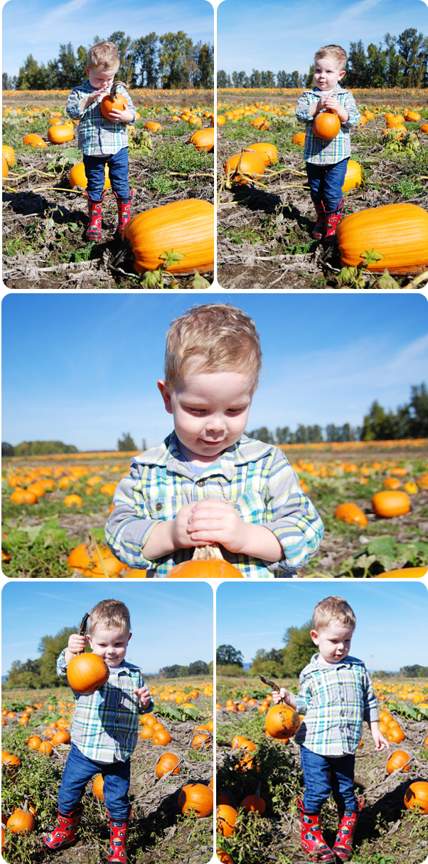 PumpkinPatch_04